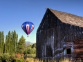 balloon-and-cat-barn-c843c5088494d062ed75ac2082aa795f1af68755